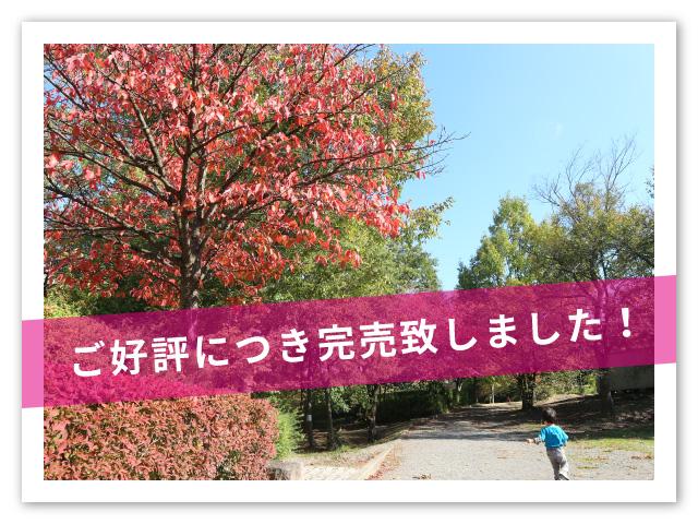 【長野市】昭和の森公園Ⅱ《全3区画》