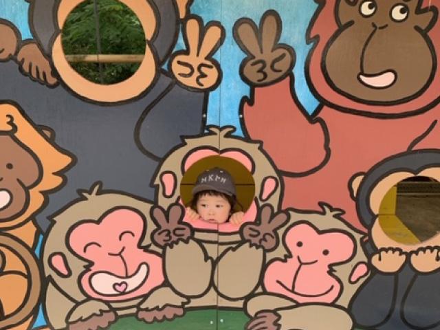 🐼茶臼山動物園🐯